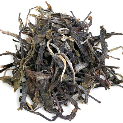 2019 Raw Puerh Tea Maocha from Wuliang Mountain offered by The Steeping Room in Austin Texas