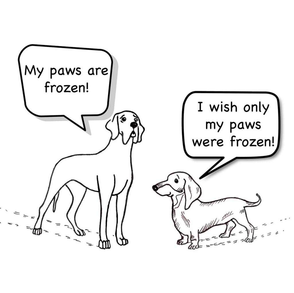 Freezy paws! - Happy Holidays Greeting Card