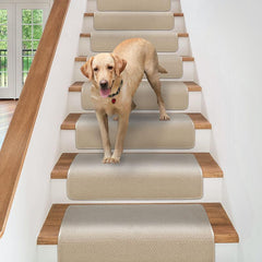 dog walking down stairs with overstep attachable carpet stair treads
