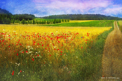 Barley and Poppies