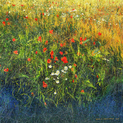 Barley and Poppies B