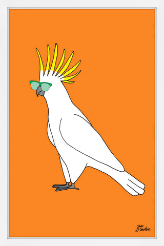 Cockatoo Hippy