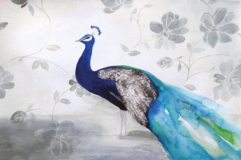 Peacock Fable Cool