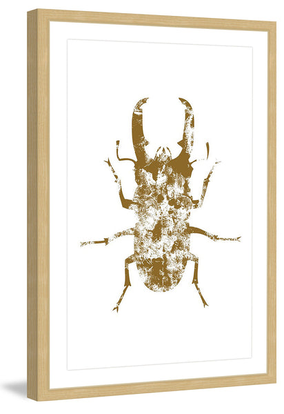 Beetle Gold