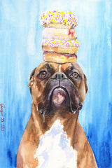 Boxer and Donuts