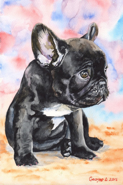 French Bulldog Puppy 2