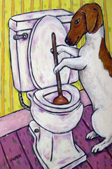JRT Plunging Toilet