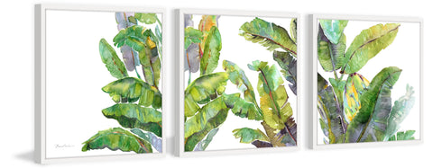 Oh Banana Leaves III Triptych