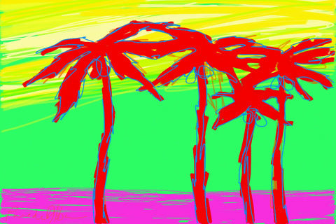 California Palms 2