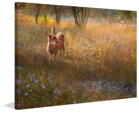 Flowered Meadow Fawn