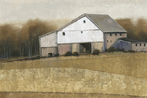 White Barn View I