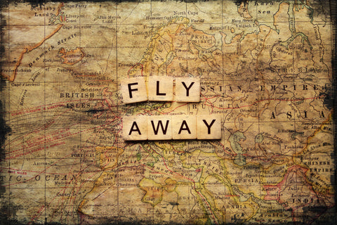 Fly Away 2