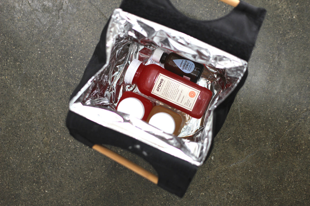 AYOMO Juice/Wine/Bottle Cooler Bag