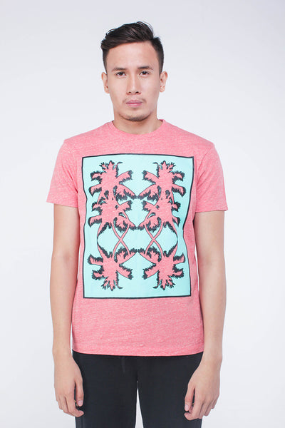 Boxed-In Coconuts T-Shirt (Tomato Red) - daretodreamhk