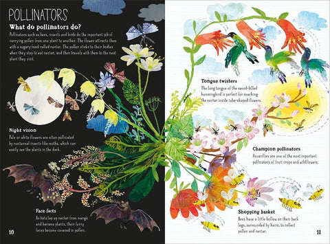 Yuval Zommer: The Big Book of Blooms