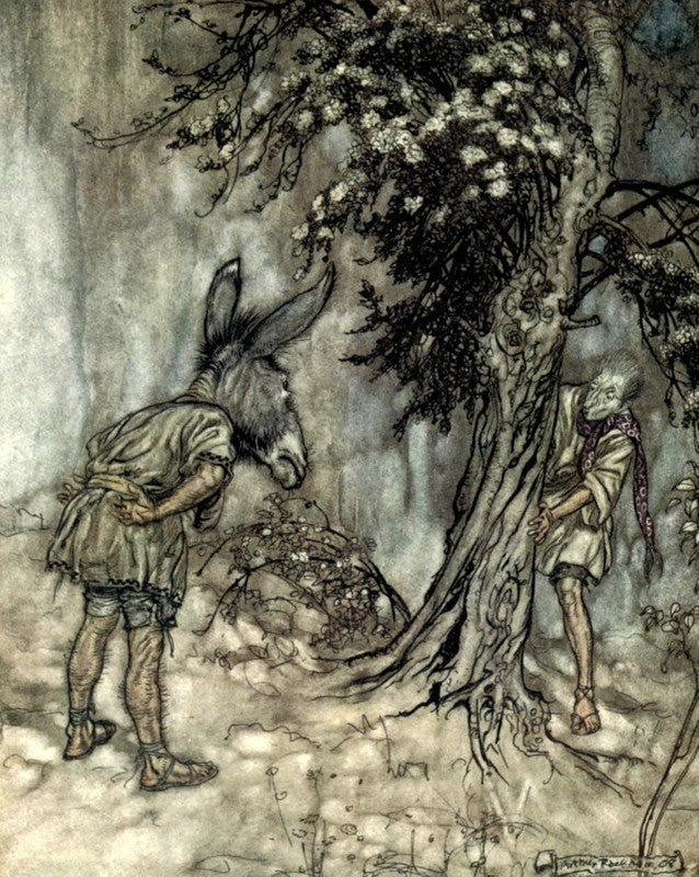 Arthur Rackham Print A Midsummers Night's Dream