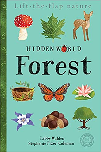 Hidden Word-Forest by Libby Walden, illustrated by Stephanie Fizer Coleman