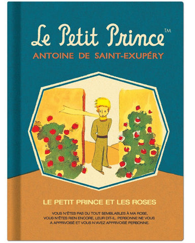 Diary (Monthly planner): The Little Prince
