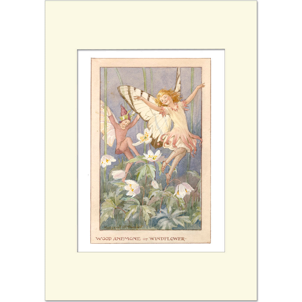 Wood Anemone Fairy by Margaret Tarrant