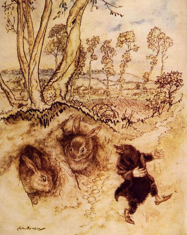 Arthur Rackham Print The Wind in the Willows