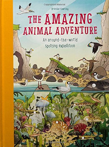 Brendan Kearney and Anna Claybourne: The Amazing Animal Adventure