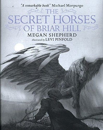 Image result for The Secret Horses of Briar Hill by Megan Shepherd, illustrated by Levi Pinfold