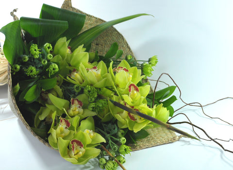Florists Choice: Cymbidium Orchid Giftwrapped