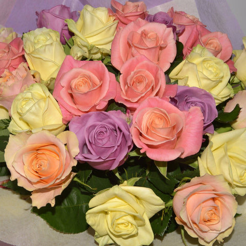 Mixed Rose Posy