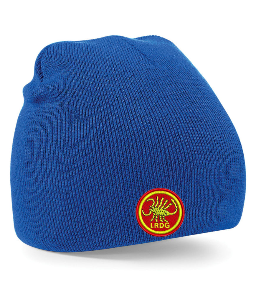 Bullion Knitted Embroidered Beanie Hat - Y4915