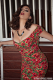 Scarlett Wiggle Dress in Poppy Print