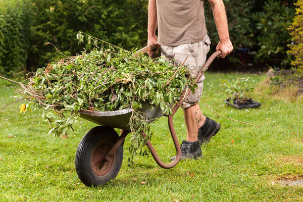 5 high-impact jobs in the garden