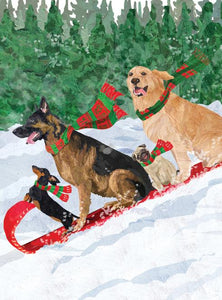 Dogs Tobogganing Holiday Cards