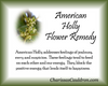 American Holly Flower Essence