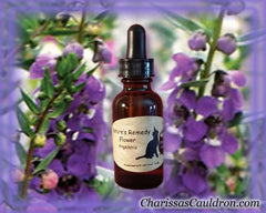 Angelonia Flower Remedy