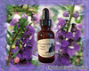 Nature's Remedies - Angelonia Flower Remedy/Essence