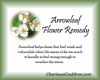 Arrowleaf Flower Essence