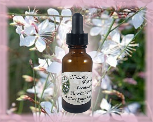Beeblossom Flower Essence