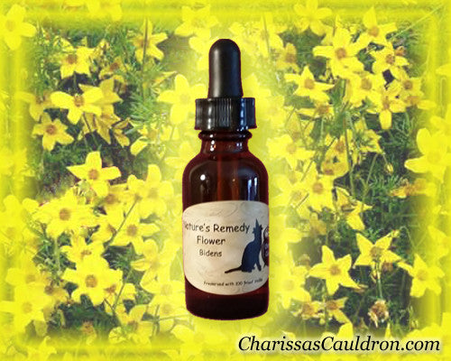 Nature's Remedies - Bidens Flower Essence/Remedy