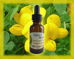 Bird's Foot Trefoil Flower Essence - Nature's Remedies