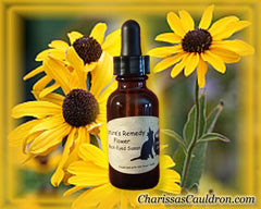 Black Eyed Susan Flower Remedy