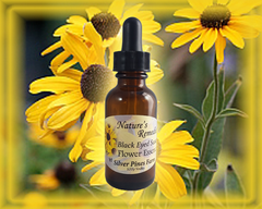 Black Eyed Susan Flower Essence - Nature's Remedies