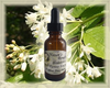 Bladdernut Flower Essence