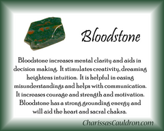 Bloodstone Crystal Essence - Nature's Remedies