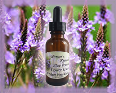 Blue Vervain Flower Essence - Nature's Remedies