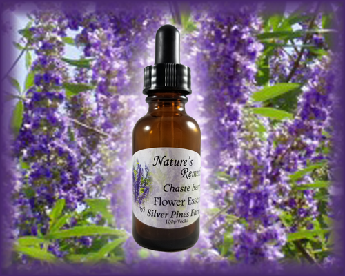 Chaste Berry Flower Essence - Nature's Remedies