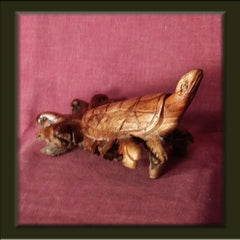 Carved Turtle made from tree burl