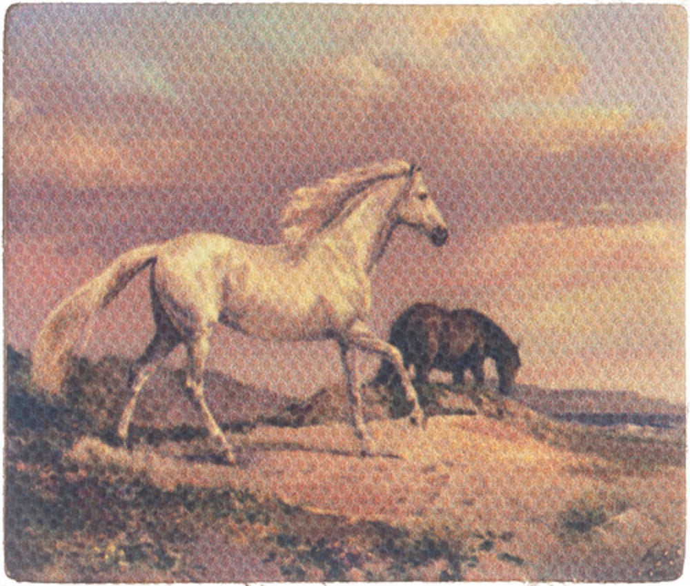 Dollhouse Miniature Tableau on Canvas, Horses #G7951