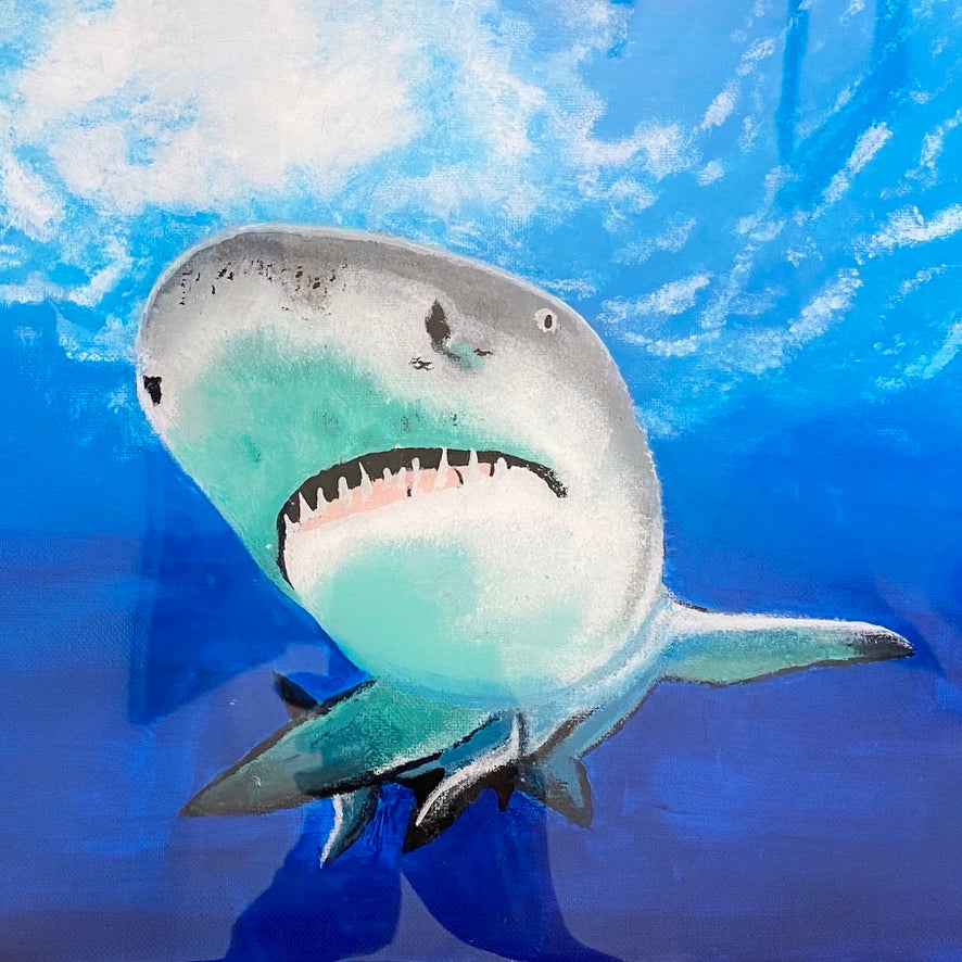 Lemon Shark painting by D Pontvieux close up
