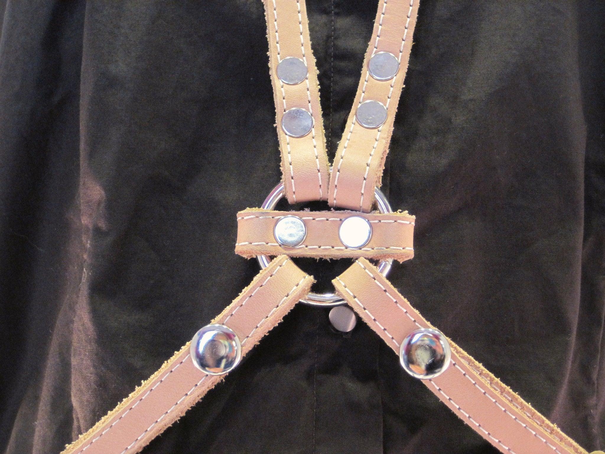 Crossover Harness Belt