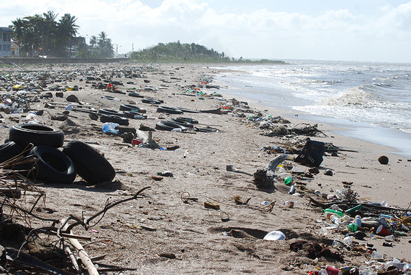 Plastic Pollution on Unknown Beach - Benefits of Drinking Filtered Water - Say No to Plastic